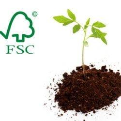 sfc1 250x250 - Papel reciclado o FSC ¿Cuál es la mejor elección?