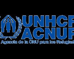Acnur colaboracion estudio diseno Barcelona