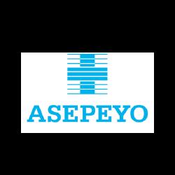 bcn grafic estudi disseny asepeyo - new home EN