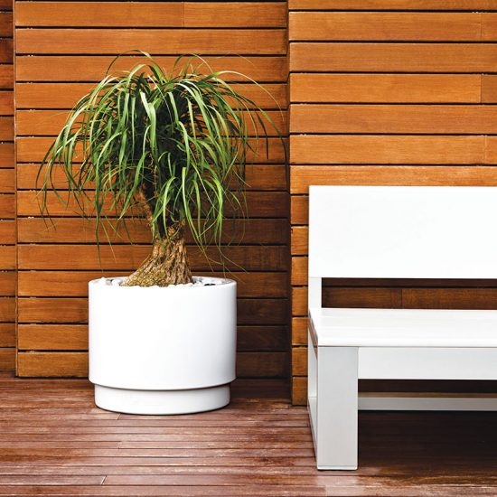 renders macetas jardineria 550x550 - Desarrollo de vídeo de producto