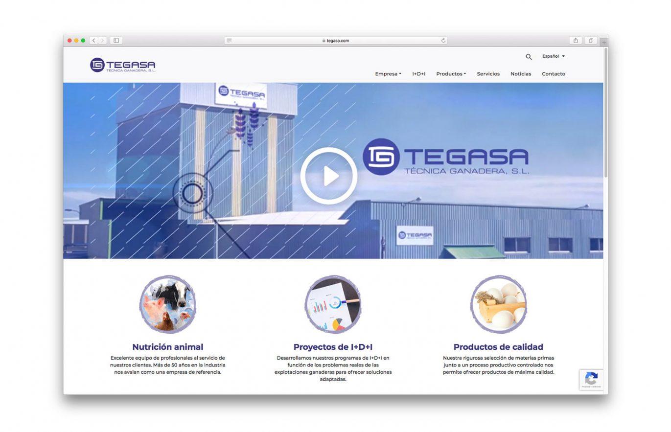 website-para-empresa-animal