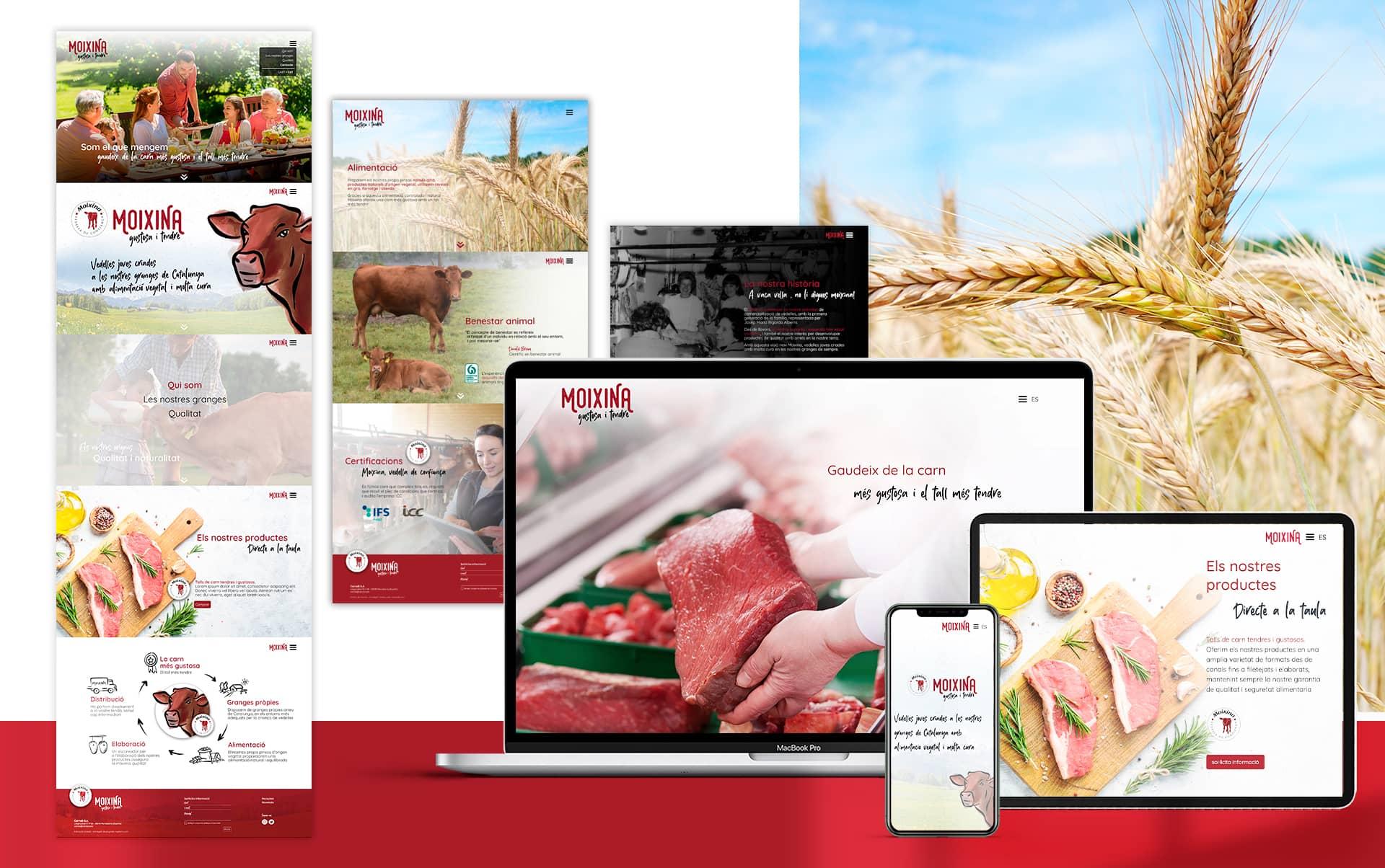 06 diseno de pagina web empresa carnica - Reposicionamiento de producto para una empresa distribuidora del sector cárnico