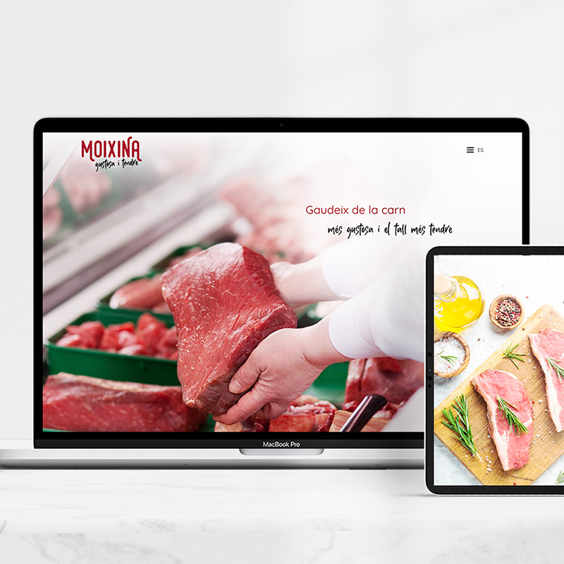 diseno de web moixina - Creación de web para alimentación cárnica