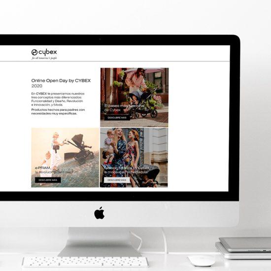 diseno de website promocional 550x550 - Evento on-line de presentación de producto