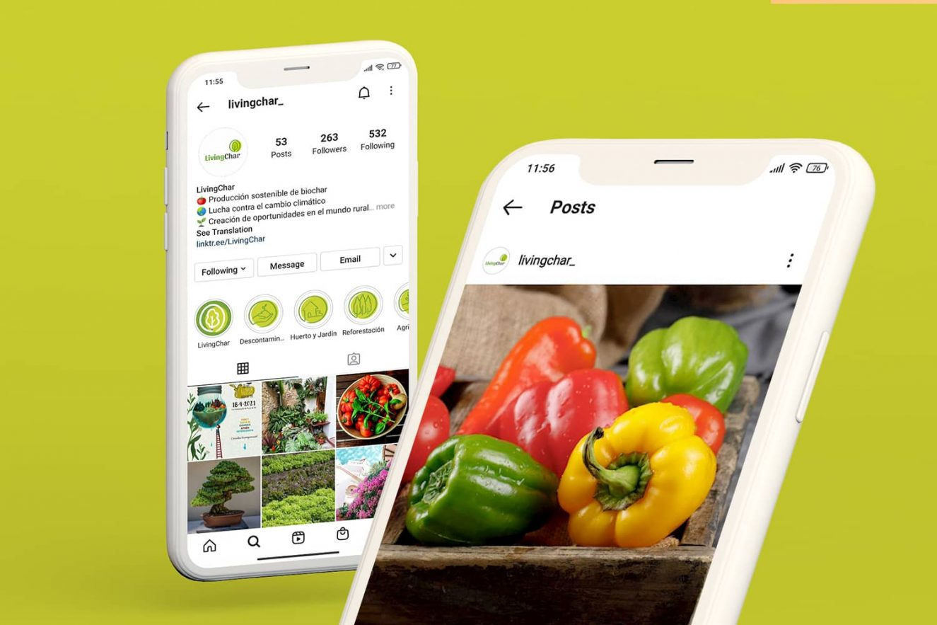 gestion-de-redes-sociales-sector-agricultura